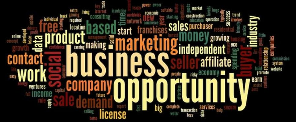 types-of-business-opportunities